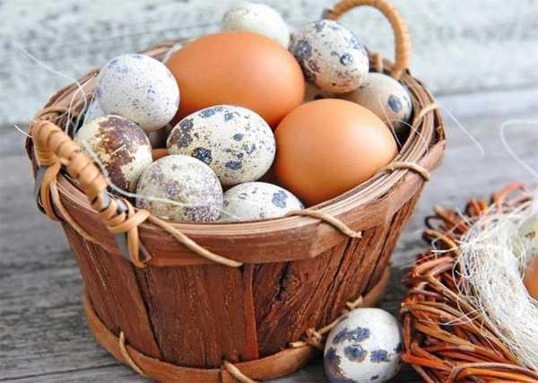 можно ли яйца при гастрите