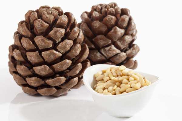 можно ли есть грецкие орехи при гастрите